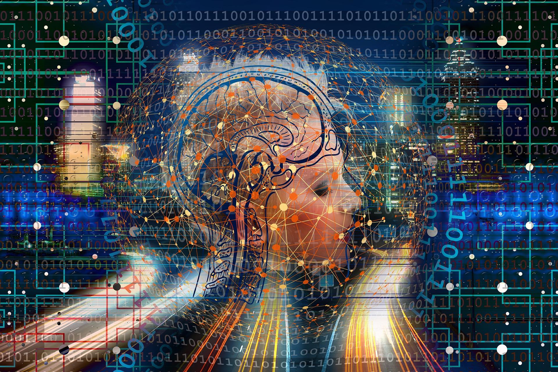Immagine La transizione digitale della formazione